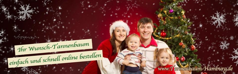Weihnachtsbaum Hamburg Leistungen